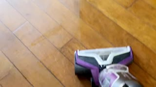 Mastiff sleeps through electric mop