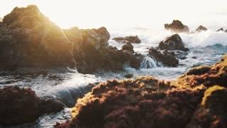 Beautiful sea waves