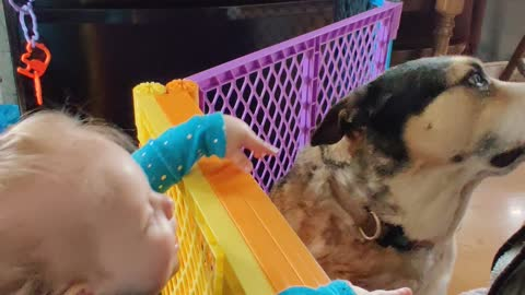 Little girl and her puppy