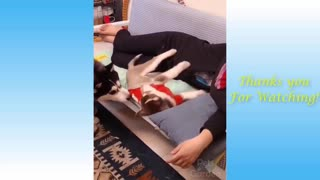 Cute a Pets And Funny Animals Compilation