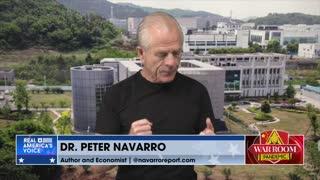 Navarro: Tony Fauci 'Created This Pandemic'