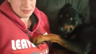 Sweetest doggy ever proves not all growls are mean