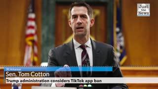 Trump administration considers TikTok app ban