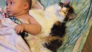 Cute kitten preciously cuddles with sweet baby