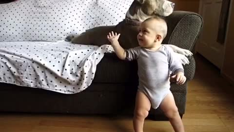 Baby and pit bull share precious interaction