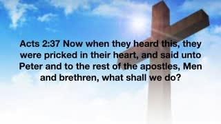 The Straight Testimony of the True Witness - Pastor Kuntz - 3/20/2021