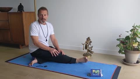 Hatha with Harry - Beginner's yoga 5.6 Adho mukha svanasana