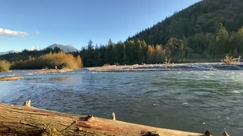 relaxing beautiful nature scenery white noise positive energy filmed in BC Canada
