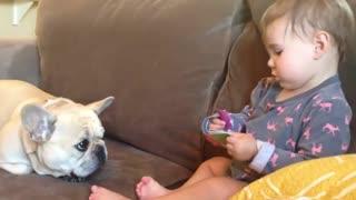 children having fun with pet