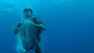 Diver Makes Circle Bubbles Under Water