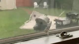 Extremely dangerous high winds rip roof off of shed