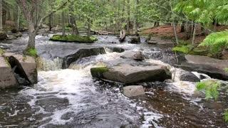 🌊Beautiful! 💧Amazing! Water Rapids in Wisconsin.
