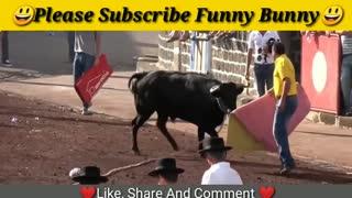 Dangerous Bull Fight Funny Compilation 2020