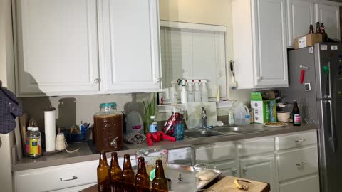 Bottling Kombucha