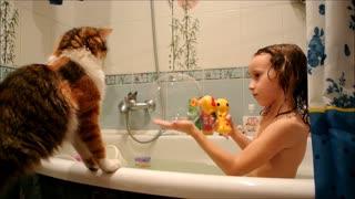 Playful cat loves to pop soap bubbles