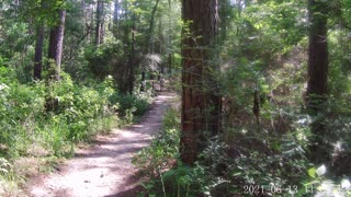 Huntsville State Park Texas Hiking and Camping