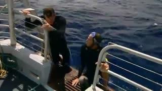Beast Tracker: Shark Test