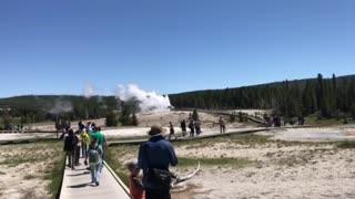 Yellowstone National Park II