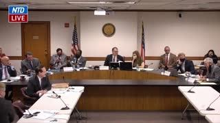 Susan Knox Testifies During Georgia Senate Hearing on Election Issues