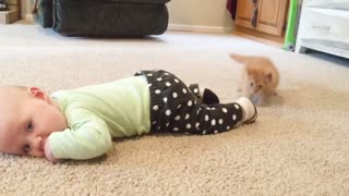 Funny Baby - Baby Playing With Animals