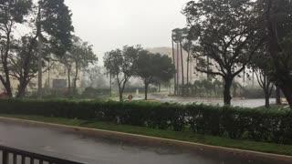Hurricane Irma in South Florida