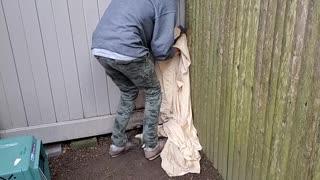 Man Rescues Raccoon that is Stuck Between Fences