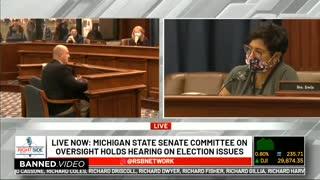 Michigan Voter Fraud Compilation