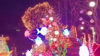 Amusement park parade scene video