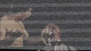 Top 10 Bruce Lee Fight Scenes