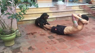 Dog Helps on Ab Day
