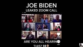 Biden's leaked Zoom call