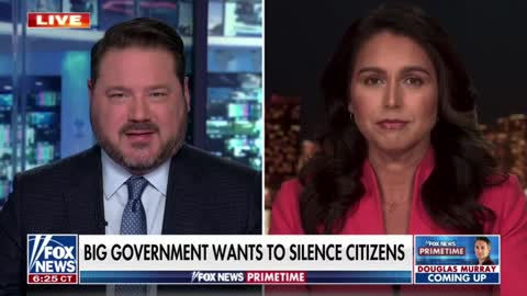 Tulsi Gabbard weighs in on the DOJ going after concerned parents