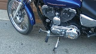 Classic Harley Davidson Lives On