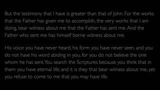 The Gospel of John - Chapter 5
