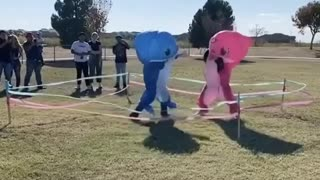 Crazy gender reveal party includes 'Baby Shark' boxing match
