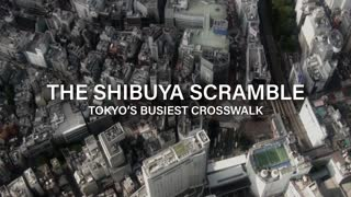 Shibuya Scramble - Official Trailer