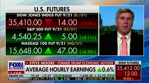 Steve Moore: It's Insanity That We Are Incentivizing People Not To Work