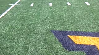 Mountaineer Field West Virginia University