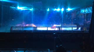 Robot Wars World Championships Grand Final Colchester 2015: Toxic 2 Vs Thor