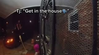 Family Freaks Out After Spotting Snake