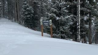 Let it SNOW!! 🥶