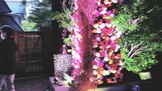 Meiji Shrine 100th Enshrinement Anniversary in Tokyo Japan - 明治神宮100周年記念東京