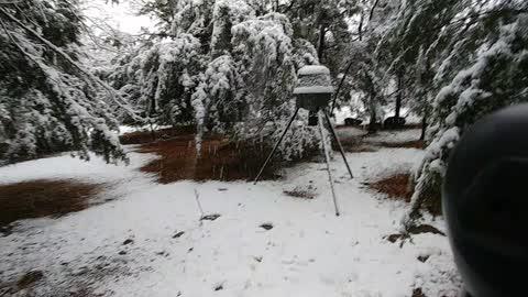 My little winter wonderland