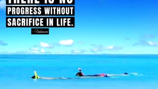 Motivational - There is No Progress Without Sacrifice In Life
