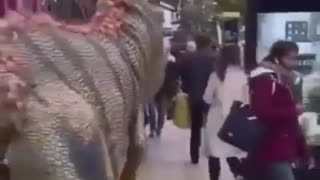 hilarious dinosaur prank 😂🦖