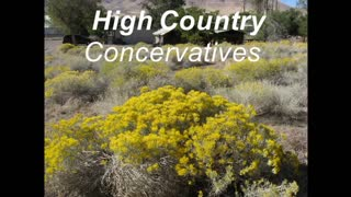 High Country Conservative