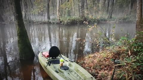 South Fork Edisto Kayaking (Flooded)