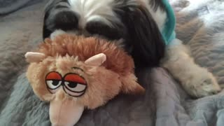Maddie Playing With Her Funny Toy