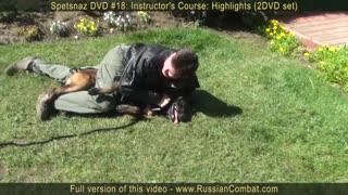 Self defense tips against dog attack