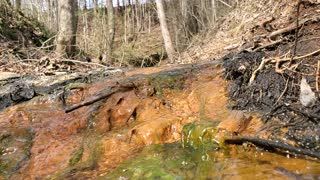 Water brook with water growth
